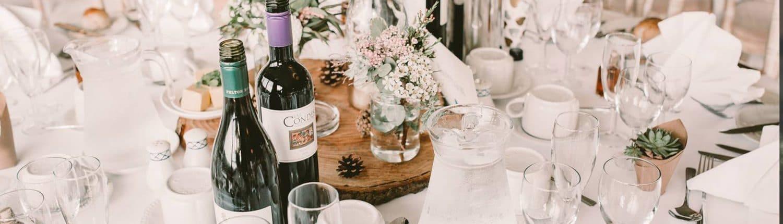 Wedding Cove Devon Celebration